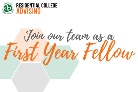 Join our team as a first year fellow!