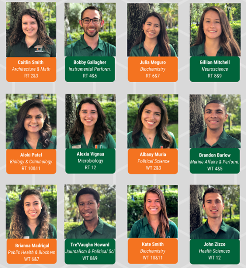 stanford first year fellows